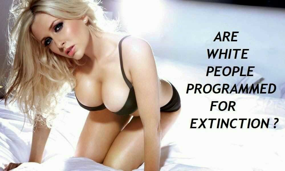 Are White People Programmed For Extinction? - image are-white-people-programmed-for-extinction on https://blackcockcult.com