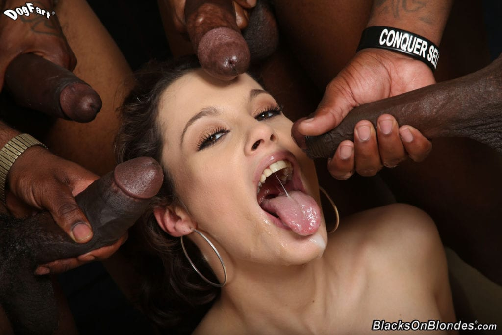Blacked and Beautiful - image 224-1024x683 on http://blackcockcult.com