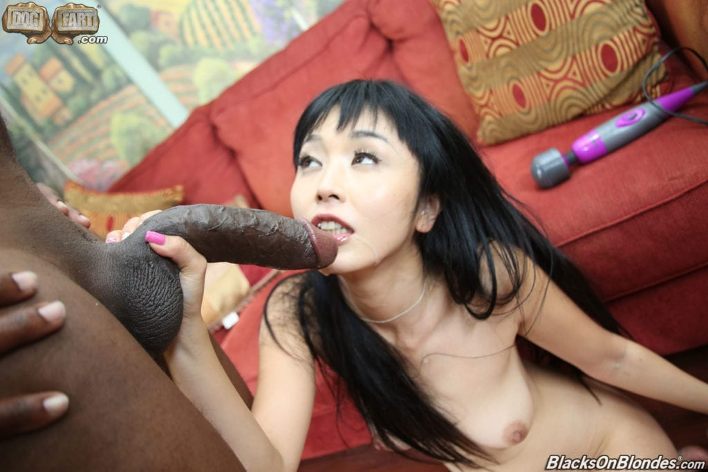 Asian Surrender is a Beautiful Thing - image Asian-Surrender-is-a-Beautiful-Thing-4-1024x683 on http://blackcockcult.com