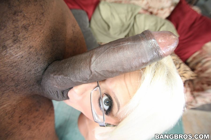 Cock Kings: Sean Michaels