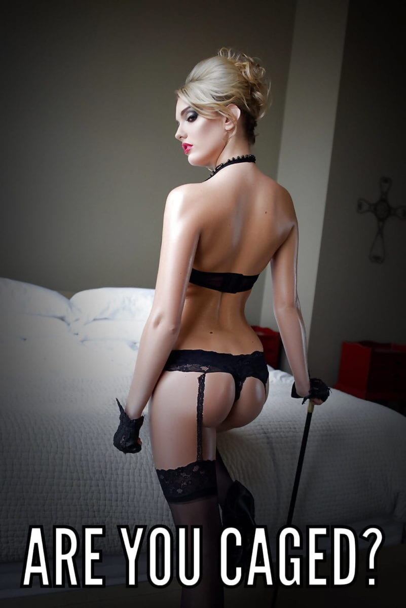 Properly Caged Sissies - image Properly-Caged-Sissies-27-801x1200 on https://blackcockcult.com
