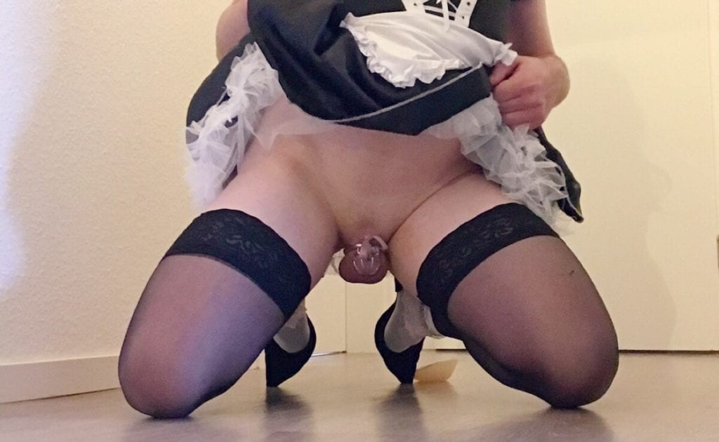 Properly Caged Sissies - image Properly-Caged-Sissies-36-1024x630 on https://blackcockcult.com