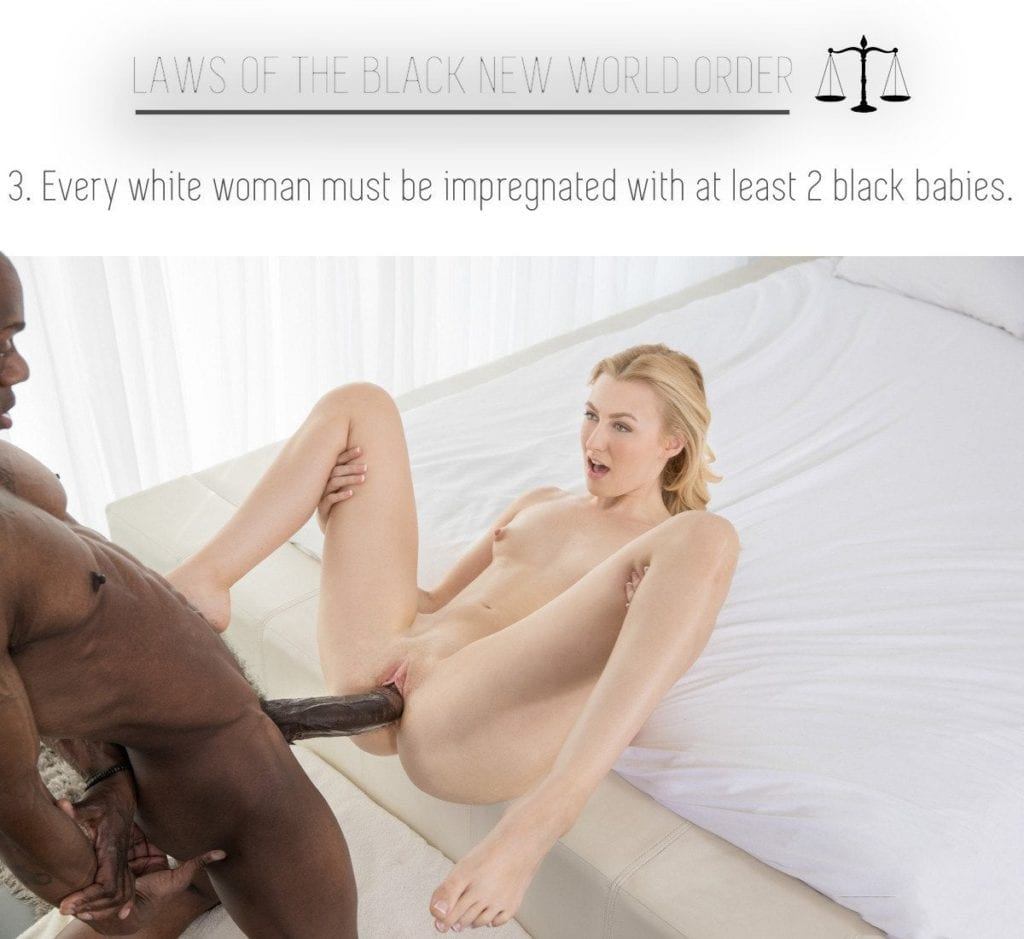 Laws Of The Black New World Order - image Laws-Of-The-Black-New-World-Order-4-1024x939 on https://blackcockcult.com