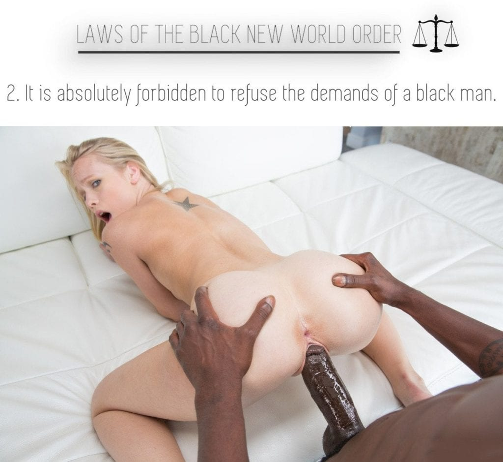 Laws Of The Black New World Order - image Laws-Of-The-Black-New-World-Order-5-1024x939 on https://blackcockcult.com