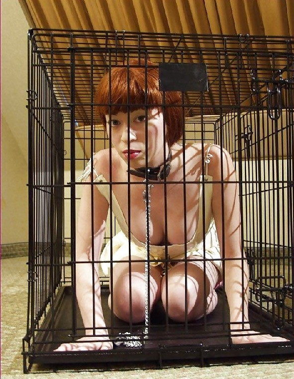 The Punishment Kennels - image The-Punishment-Kennels-15 on https://blackcockcult.com